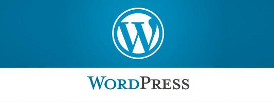 Curso complementario de WordPress III